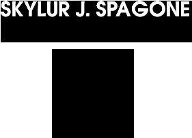Skylur J. Spagone Memorial Fund